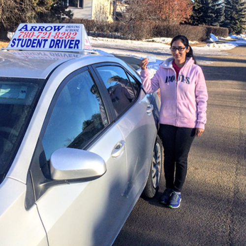 driving lessons - option 8