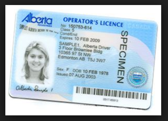 alberta drivers license blog image